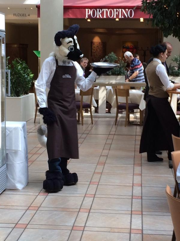 Yes, that is an Estrel employee at #EF20.  Yes, they are working. YES, THEY ARE FURSUITING. http://t.co/LysPdZjMJU