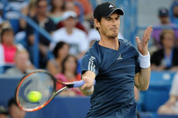 The 2014 US Open: Watch a Live Stream of the tennis major   available in UK
