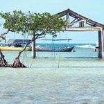 Yuk liburan seru ke pulau biawak, surga tersembunyi di utara Indramayu. Info trip kesana follow & tanya @Kotaku_tour http://t.co/4oGx9q3Qm3