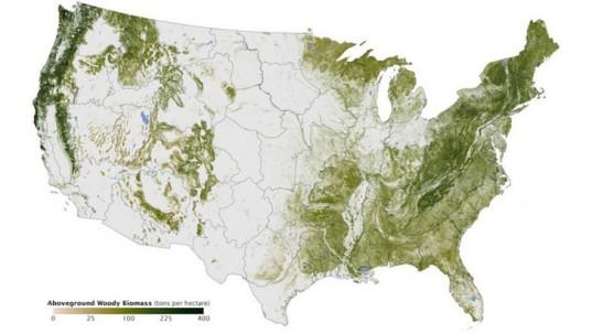 A new map that shows every tree in the U.S.   http://t.co/due77hk0XQ http://t.co/dbJDKui4gy