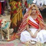 RT @luxraj: @divyadutta25 plz dekhiea aapka welcome to sajjanpur yaad aa jayega... http://t.co/gTjSlF2dI1