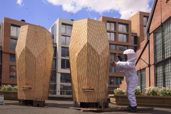 Gaat #bij zondere #architectuur op daken de #bijen redden?#reddebij @blancoarchitect @7ideas @SonnyBeez @GreenpeaceNL http://t.co/yei02oj2e1