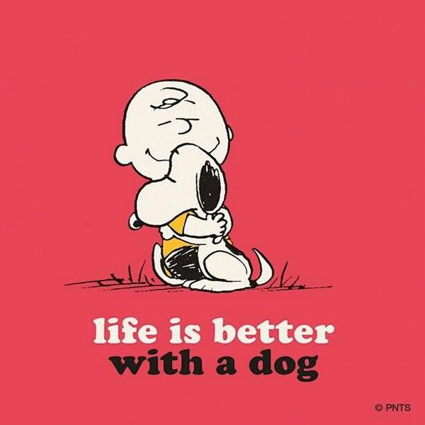Because life's better with a dog. RT if you agree. #NationalDogDay http://t.co/97zfUPl2kR