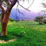 RT @WeatherOman: الطبيعة الساحرة #حيل_العاجة #عمان #بهلاء #سنت #جبل_الكور http://t.co/VPulAK3u8h