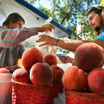 RT @sltrib: .@UUtah on-campus farmers market starts tomorrow, with fresh produce, arts and more: http://t.co/1n5mcX0PhJ http://t.co/m6oIleF6s7