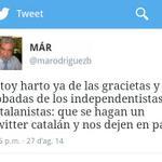 RT @Candeliano: Pobre @marodriguezb. El alcohol lo ha convertido en un fake de si mismo. http://t.co/RD4UvTSj8O