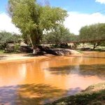 "RT @JesusAlopezz: ""@Milenio: Ponen en marcha estrategia ""Salvemos al río"" en Sonora http://t.co/LgBGww6PkY http://t.co/8zjb5FnkDb"""
