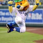 This picture. RT @Royals: Our favorite lion getting into the Irish spirit! #beroyalkc http://t.co/dpmPZwjYY6