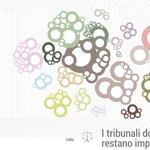 Data journalism - I #tribunali dove i reati restano impuniti http://t.co/ZzgNkeYguq a cura di @raphael_zanotti http://t.co/FHVo2MZJqA