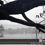 RT @Isolated_Pixel: The #Kandy lake on a rainy day. #Photography #lka #SriLanka http://t.co/yB6v6ZZt6L