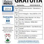 RT @PerrosdeMerlo: ¡¡Vamos que arrancamos #septiembre con todo en #Merlo!! CASTRACIONES GRATUITAS con #fabaong http://t.co/VZ48MySMRw http://t.co/52FMOhKE2F