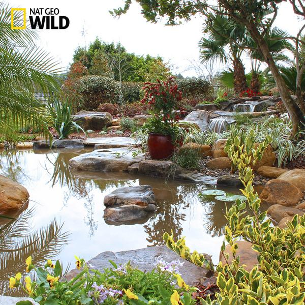 What is your outdoor escape? Share with us your #PONDerful moments #PondStars premieres Sept 9 at 10/9c! http://t.co/lKKiiJ1Vzm