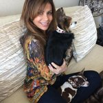 Wow! My girls looks so pretty in their beautiful ruby & white sapphire #Tsavari dog collars!! http://t.co/541rllhwQH http://t.co/GldQcP0hGR