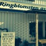 Kreativ blomsterhandler i Lødingen! #2pl http://t.co/yHZGxYmQ3m