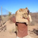 RT @eluniversocom: [VIDEO] Emotivo encuentro de una leona y quien fuera su cuidador http://t.co/i4rP8sH9pr http://t.co/dxt0E0ipQN