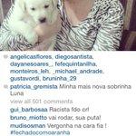 RT @moret_: E já descambou pro instagram da gremista: http://t.co/se0rywCBrh