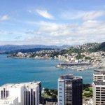 RT @Wellington_NZ: Spring is coming! #Wellington #NewZealand http://t.co/EIrY2yohVk http://t.co/b9Jy2XcKjg