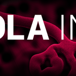 #EbolaFact: Ebola can be spread by handling an infected animal. Get all the facts - add Ebola Info on Mxit http://t.co/tFZM3TaGi9
