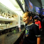 Spend the final days of Museum Month experiencing the beauty – and bugs - of nature! http://t.co/ZDOfkKVHoH #NOLA http://t.co/pIDgERo0lv