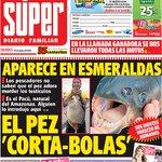 RT @MauricioTurbayH: ¡Pilas! #DiarioSuper pez #CortaBolas en #Esmeraldas dicen q es del Amazonas y llegó a #Ecuador, muerde los testículos http://t.co/i2lgbuiAq8
