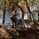 Brush fire along lower Sardine Creek Rd is being mopped up by ODF and Rogue River RFD firefighters. http://t.co/YE6p20skE3