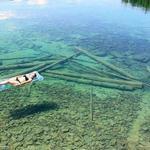 RT @VoceNaoSabiaQ: Por causa das águas cristalinas, o Lago Flathead parece raso, mas na realidade tem 50,2 metros de profundidade média- http://t.co/X8Conz3HV8
