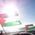 عندما تنتصر #فلسطين.. http://t.co/9SFMwR21af