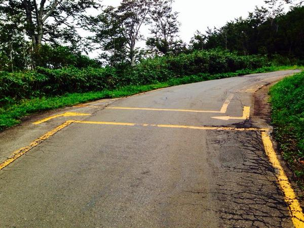 この歩道の標示、SDVXか http://t.co/Jp3WWCVbqJ