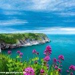 RT @GaryHolpin: Just #beautiful #Devon ♥♥♥ #Britain @VisitDevon @VisitBritain http://t.co/VvHTvLuBzP