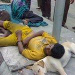 RT @PTI_tsunami: RT #CrimeMinisterNS @alishan297: #PMLN Demon-cracy in Pakistan.. @mubasherlucman @DrDanish5 @AsimBajwaISPR http://t.co/z8v4BjhZ64