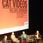 The cliche of the cat lady is dead! All male panel for #FODI session: will cat vids kill journalism? http://t.co/YbhkvCZC3B