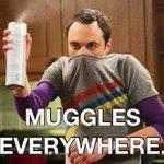 RT @RaizaRevelles: 1 vez alguien hablaba de cosas que había comprado de Harry Potter. Le pregunté de qué casa era y no entendió. Yo: http://t.co/1NlqzEYCM7