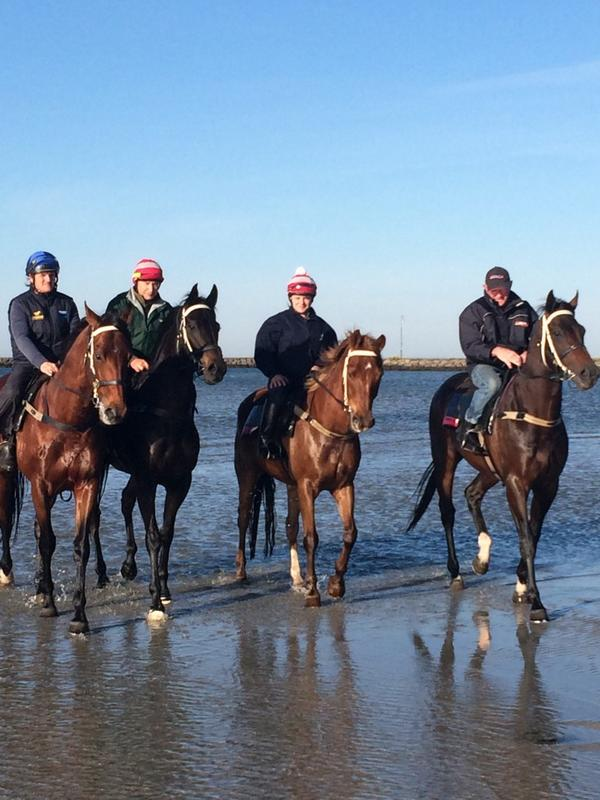 Awesome Rock on right Commanding Jewel middle. Both have come through yesterday's run super well. Loving the beach http://t.co/YtITKRv8Se