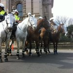 RT @goforgold80s: Denis Naphtines anti-protest cavalry #marchinaugust http://t.co/rDWeAjZzdx