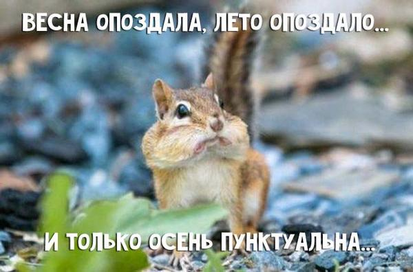 Доброе утро! С 1 сентября, чтоле.... http://t.co/lhoaabNOvR