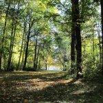 Die CAU wünscht euch einen wunderschönen meteorologischen #Herbstanfang! :) @GEOMAR_de ^sm http://t.co/uV0w32Ke3m