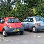 Ka Ka seen in in Hillsborough car park #swfc http://t.co/EP2jFmZQLQ