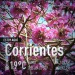 ¡Feliz #Septiembre! Estos son los datos del tiempo en #Corrientes ahora. #VamosParaAdelante http://t.co/oEUo7kuC8B
