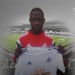 RT @SwansOfficial: #Swans complete signing of Ostersunds FK striker Modou Barrow - http://t.co/MVCsainmzY http://t.co/flC7HVc3fo