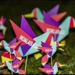 RT @Frente_Amplio: Porque #AMANECEYNOBAJA Llegó Setiembre y se llenó de colibríes! http://t.co/mzApSOYDGG