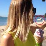 RT @g1: Jovem tem sorvete atingido por fezes de pássaro, não percebe e come http://t.co/WqK4vmu1eI #G1PlanetaBizarro http://t.co/CdutP8fIm3