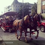 """Barrington St By @thesarsnetwork """"Hoods #Horse #Tours #Halifax"""" http://t.co/gEiwHfepJB"""