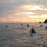 What a beautiful Sunrise: Only those boats have but one purpose - to hunt & butcher hundreds of dolphins #Tweet4Taiji http://t.co/jeVHW8KDfX