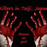 SHAME ON YOU!!! #tweet4taiji http://t.co/9hHyJjRptN