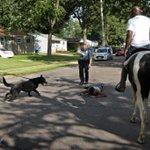 @lisadraws @lisadraws UPDATE: Men on horseback help #Ferguson police catch robbery suspect: https://t.co/4MHudq4nAb
