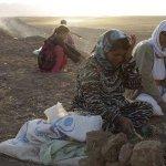 """RT @el_pais: Amnistía acusa a los yihadistas de perpetrar una """"limpieza étnica"""" en el norte de Irak http://t.co/Brpiaa0Sbd http://t.co/WHi3WzjuB0"""