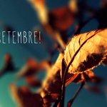 RT @Agencia_Moderna: Adéu vacances, hola setembre! http://t.co/3dSomCgEex