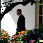 RT @usnews: Obama tries cautious approach to crises ahead of NATO summit http://t.co/tOwsHhJ0x5 #Ukraine #Gaza #Iraq http://t.co/Gjw0Z86EWu