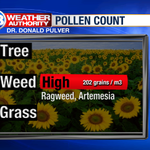 RT @13WHAM: Latest pollen count in #ROC. Ragweed posted a dramatic increase. http://t.co/DRu59pTIRk http://t.co/r1K9J8LHSk