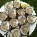 guess whos back! We love months with the letter r @KellyOysters #oysters #galway #wild #September #BestInGalway http://t.co/7qmnAtNdQV